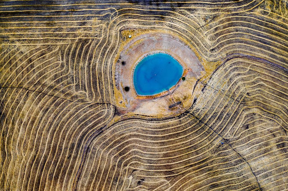 Wheat field in Western Australia