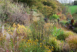Grasses, seedheads and autumnleaf colour in the brick garden at Glebe Cottage