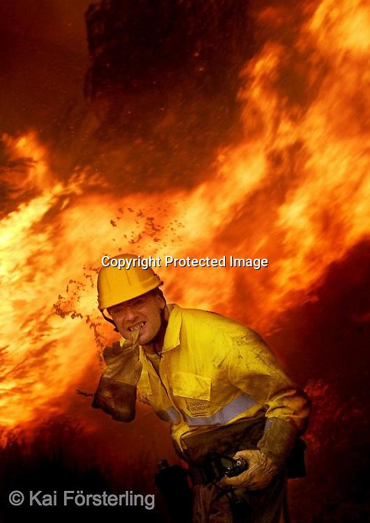 Valencia, 22/06/05. Un brigada forestal se retira ante el avance del fuego en el incendio forestal en L´Olleria que se originó anoche en Jativa.