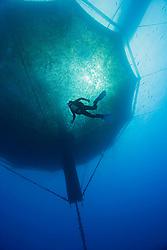 scuba diving worker and 3,000-cubic-meter submersible fish pen installed in open ocean just off Kona Coast to raise Kona Kampachi, Hawaiian yellowtail, aka almaco jack or kahala, Seriola rivoliana, Kona Blue Water Farms, Big Island, Hawaii, Pacific Ocean