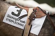 9  April, 2011:  Stoneybrook races detail