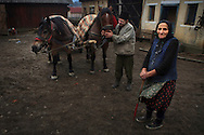 Rural Romanian couple outside of their house with their horses. Maramures, Romania
