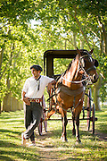 Gaucho with horse and carriage, La Bamba De Areco Estancia, San Antonio De Areco, Argentina, South America