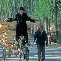 Uygar men carry wood products on a donkey cart to the bazaar in Kashgar (Kashi), a city on the ancient Silk Road in Xinjiang, China.