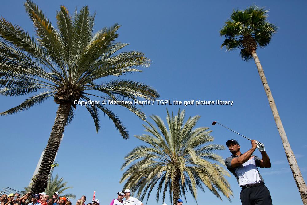 Tiger WOODS (USA) and Rory MCILROY (NIR) during first round  Omega Dubai Desert Classic 2014, Emirates Club,Dubai,UAE.