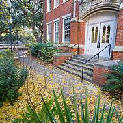 University of Florida-Autumn