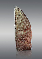 Late European Neolithic prehistoric Menhir standing stone with carvings on its face side. The representation of a stylalised male figure starts at the top with a long nose from which 2 eyebrows arch around the top of the stone. below this is a carving of a falling figure with head at the bottom and 2 curved arms encircling a body above. at the bottom is a carving of a dagger running horizontally across the menhir. Excavated from Pranu Maore I site,  Laconi. Menhir Museum, Museo della Statuaria Prehistorica in Sardegna, Museum of Prehoistoric Sardinian Statues, Palazzo Aymerich, Laconi, Sardinia, Italy. Grey background. .<br /> <br /> Visit our PREHISTORIC PLACES PHOTO COLLECTIONS for more photos to download or buy as prints https://funkystock.photoshelter.com/gallery-collection/Prehistoric-Neolithic-Sites-Art-Artefacts-Pictures-Photos/C0000tfxw63zrUT4