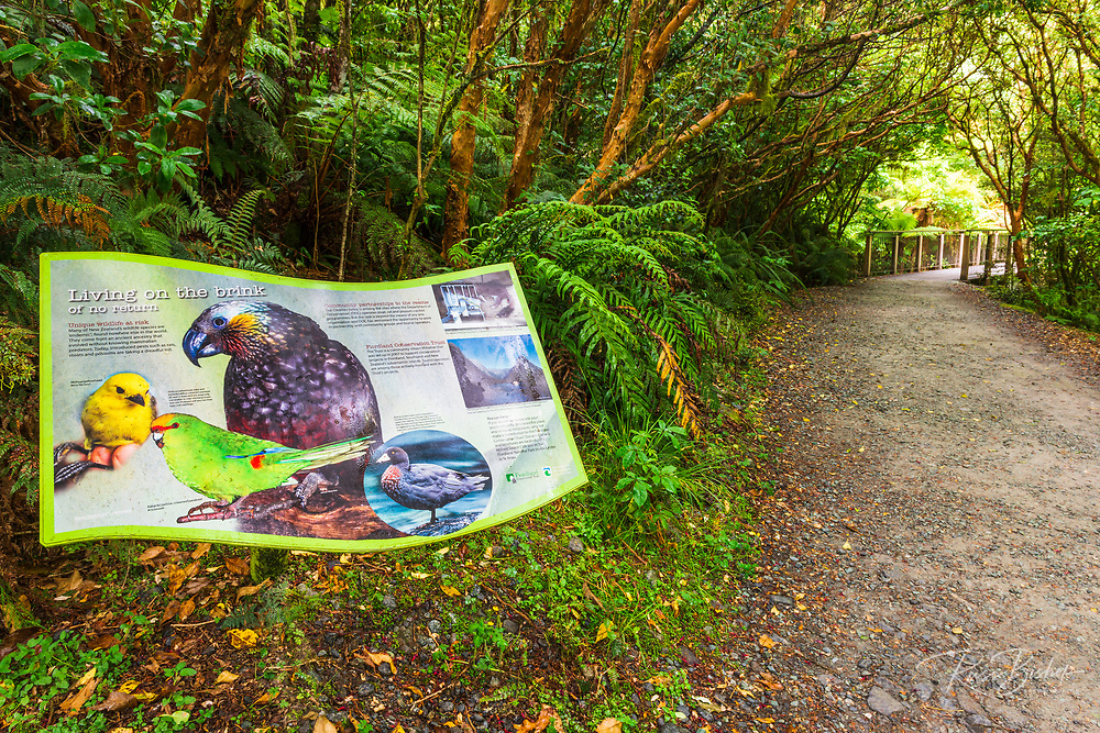 Interpretive sign at The Chasm, Fiordland National Park, South Island, New Zealand
