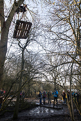 Harefield, UK. 18 January, 2020. An earth protector pulls a pallet up a tree after activists from Extinction Rebellion, Stop HS2 and Save the Colne Valley reoccupied the Harvil Road wildlife protection camp on the second day of a three-day 'Stand for the Trees' protest in the Colne Valley timed to coincide with tree felling work by HS2. Bailiffs acting for HS2 had evicted all but two activists from the camp the previous week. 108 ancient woodlands are set to be destroyed by the high-speed rail link.