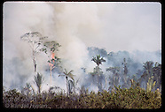 08: RUBBER TAPPERS JUNGLE FIRE, FOREST
