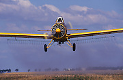 A yellow agricultural crop dusting aircraft sprays a farm field with pesticide.<br />