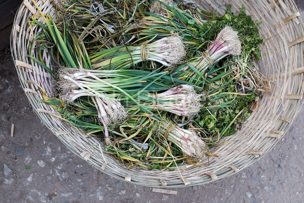 Spring onions displayed in a woven basket for sale in Mekshina market, Bhutan