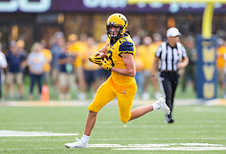 Oct 6, 2018; Morgantown, WV, USA; West Virginia Mountaineers wide receiver David Sills V (13) catches a pass during the third quarter against the Kansas Jayhawks at Mountaineer Field at Milan Puskar Stadium. Mandatory Credit: Ben Queen-USA TODAY Sports