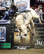 Ryan Dirteater rides Deep Water during the Professional Bull Riders, Built Ford Tough Series at the Sprint Center, Saturday, Feb. 11, 2017, in Kansas City, Mo. (AP Photo/Colin E. Braley)