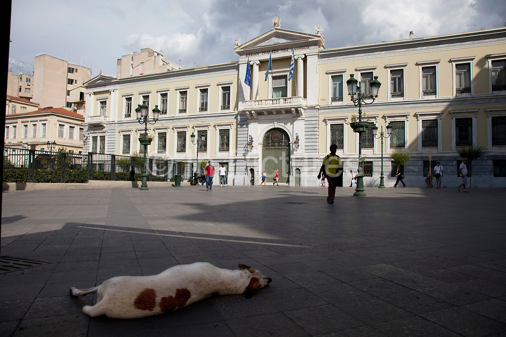 A stray dog sleeps in shadows in front of The National Bank of Greece in Plateia Kozia between the areas of Omonia and Monastiraki. It is the oldest and largest commercial banking group in Greece. The group has a particularly strong presence in Southeastern Europe and the Eastern Mediterranean. It owns subsidiaries in over 18 countries. Founded in 1841 as a commercial bank, NBG enjoyed the right to issue banknotes until the establishment of the Bank of Greece in 1928. It has been listed on the Athens Stock Exchange since the Exchange's foundation in 1880. Since October 1999, the Bank has been listed on the New York Stock Exchange. The NBG Group is involved in the investment banking services, brokerage, insurance, asset management, leasing and factoring markets. Athens is the capital and largest city of Greece. It dominates the Attica periphery and is one of the world's oldest cities, as its recorded history spans around 3,400 years. Classical Athens was a powerful city-state. A centre for the arts, learning and philosophy.