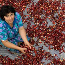 Health and agriculture, Armenia