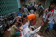 Men butcher a cow in a makeshift slaughterhouse on the street in Dakha, Bangladesh as they prepare for the annual religious festival of Eid al-Adha. Bangladesh has the world's fourth largest Muslim population, and during the three days of Eid al-Adha, the Festival of Sacrifice, Dhaka's streets run red with the blood of thousands of butchered cattle. The feast comes at the conclusion of the Hajj, the annual Islamic pilgrimage to Mecca. In both the Koran and the Bible, God told the prophet Ibrahim (Abraham) to sacrifice his son to show supreme obedience to Allah (God). At the last moment, his son was spared and Ibrahim was allowed to sacrifice a ram instead. In Dhaka, as in the rest of the Muslim world, Eid al- Adha commemorates this tale, and the meat of the sacrificed animals is distributed to relatives, friends, and the poor.