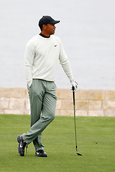 June 12, 2019 - Pebble Beach, CA, U.S. - PEBBLE BEACH, CA - JUNE 12: PGA golfer Tiger Woods waits to play his shot on the 18th fairway during a practice round for the 2019 US Open on June 12, 2019, at Pebble Beach Golf Links in Pebble Beach, CA. (Photo by Brian Spurlock/Icon Sportswire) (Credit Image: © Brian Spurlock/Icon SMI via ZUMA Press)