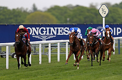 Muchly ridden by jockey Frankie Dettori (left) goes onto win the Naas Racecourse Royal Ascot Trials Day British EBF Fillies' Conditions Stakes during Royal Ascot Trials Day at Ascot Racecourse.