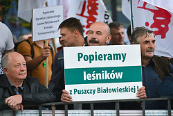 July 4, 2017 - Krakow, Poland - Hundreds of foresters, Polish Minister of Environment and Polish Government supporters oppose activists and protesters from 'Love Primeval Forest of Bialowieza' during a protest in front of ICE Congress Center where the 2017 World Heritage Committee sessions are host..On Tuesday, July 4, 2017, in Krakow, Poland. (Credit Image: © Artur Widak/NurPhoto via ZUMA Press)