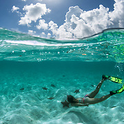 A snorkeler enjoys clear water, sand and sea stars in The Bahamas.