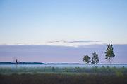 "Restored heather fields for biodiversity in foggy morning, protected landscape area ""Ādaži"", Latvia Ⓒ Davis Ulands | davisulands.com"