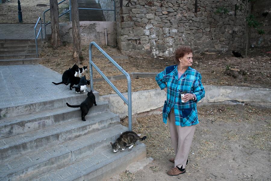 /ES/ Al atardecer, Marta sube al barrio para alimentar a Vaquita y los demás gatos salvajes de la montaña.