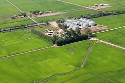 Vista aerea de lavoura de arroz/ Aerial view of rice crops