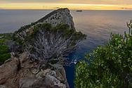 Oceania, Australian, Australia; Tasmania; Tasman Peninsula; Tasman National Park; Cape Hauy,