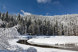 """""""Snowy Truckee River 4"""" - Photograph of an iced over and snowy Truckee River in the winter."""