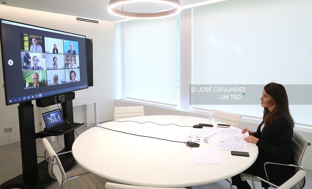 Queen Letizia of Spain attends a videoconference with main oncological entities at Zarzuela Palace on May 14, 2020 in Madrid, Spain