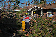 Firemen cut fallen trees in the yard of a home in    Lynn Haven, Florida that was damaged by Hurricane Michael.