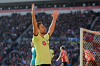 Football - Premier League - Sunderland vs.  Newcastle United<br /> Yohan Cabaye (Newcastle United) celebrates his goal to put his team ahead at the Stadium of Light