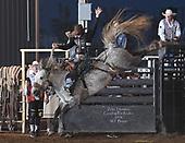 Saddle Bronc Gooding Thur 18