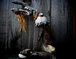 www.catherineherreraphotography.com