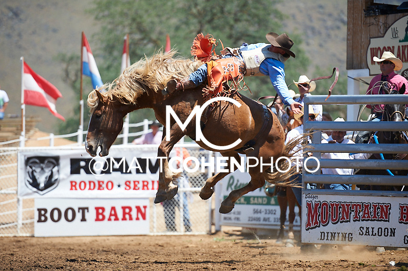 Bareback rider Clayton Biglow of Clements, CA rides Coors Light at the Woodlake Lions Rodeo.<br /> <br /> <br /> UNEDITED LOW-RES PREVIEW<br /> <br /> <br /> File shown may be an unedited low resolution version used as a proof only. All prints are 100% guaranteed for quality. Sizes 8x10+ come with a version for personal social media. I am currently not selling downloads for commercial/brand use.