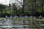 London, UK,  2014 Varsity, Annual Tideway Week. CUBC, Cambridge University Boat Club, Blue Boat, executing square blade training exercise. 09:57:22  Tuesday  01/04/2014  : [Mandatory Credit Intersport Images]<br /> CUBC. Bow. Mike THORP, 2. Luke JUCKETT, 3. Ivo DAWKINS, 4. Steve DUDEK, 5. Helge GRUETJEN, 6. Matthew JACKSON, 7. Joshua HOOPER, Stroke, Henry HOFFSTOT and cox Ian MIDDLE TON