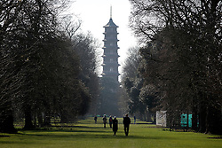 © Licensed to London News Pictures. 11/03/2015. Kew, UK.People walk toward the Chinese Pagoda. People enjoy the crocus displays at Kew Garden's today 11th March 2015. The display features the variety Crocus tommasinianus. The Uk has enjoyed warm sunny weather this week.  Photo credit : Stephen Simpson/LNP