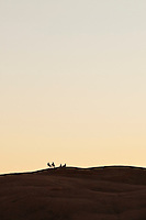 Four people sitting on the slickrock sandstone above Moab, Utah relaxing while watching the sunset.  USA