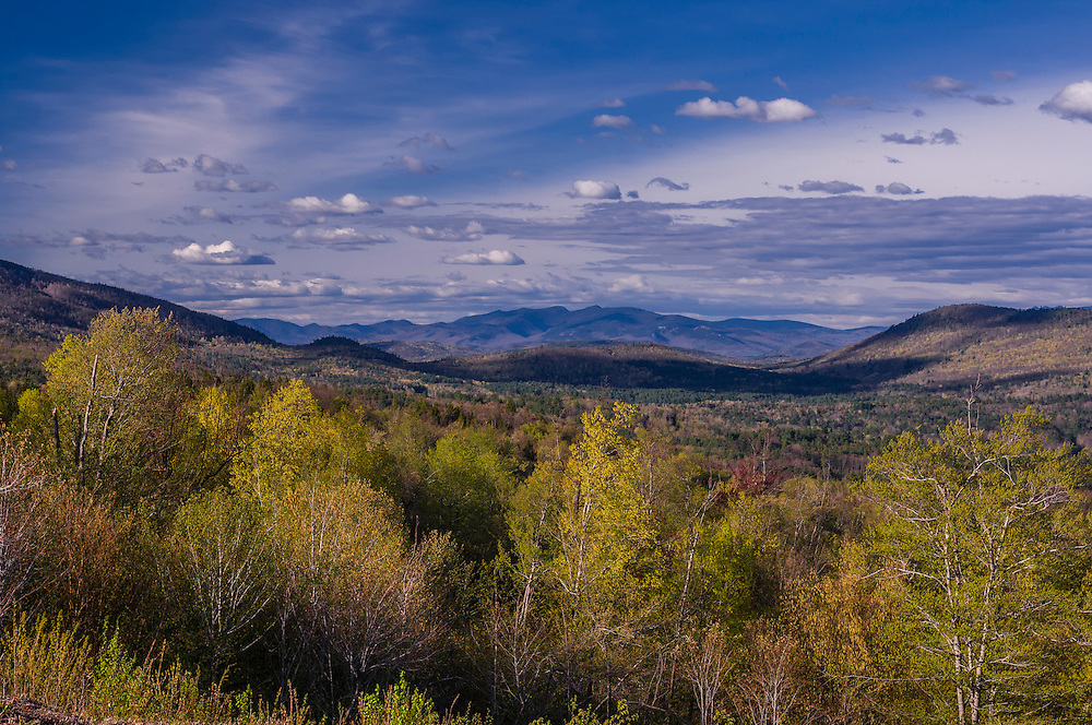 White Mtn views, with trees in spring greens, Mt Tecumseh center, Hebron, NH