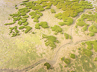 Abstract aerial view of Formosa lagoon in Portugal.