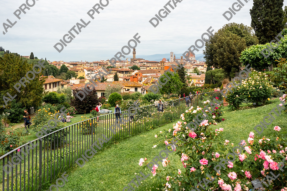 View of the city of Florence from the Giardino delle Rose -Rose Garden- public park in Florence, Tuscany region - Italy