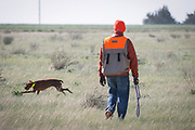 SHOT 5/9/20 8:46:51 AM - Various pointing breeds compete in the Vizsla Club of Colorado Licensed Hunt Test Premium at the Rocky Mountain Sporting Dog Club Grounds in Keenesburg, Co. (Photo by Marc Piscotty / © 2020)