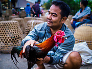 06 AUGUST 2017 - MENGWI, BALI, INDONESIA: A man with a fighting cock he bought in the Bringkit Market in Mengwi, about 30 minutes from Denpasar. Bringkit Market is famous on Bali for its Sunday livestock and poultry market. Hundreds of the small Bali cows are bought and sold there every week. Bali's local markets are open on an every three day rotating schedule because venders travel from town to town. Before modern refrigeration and convenience stores became common place on Bali, markets were thriving community gatherings. Fewer people shop at markets now as more and more consumers go to convenience stores and more families have refrigerators.     PHOTO BY JACK KURTZ