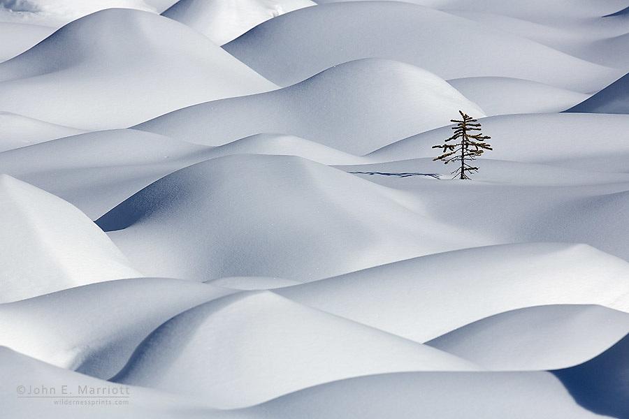 Snow pillows in Jasper National Park