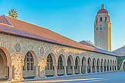 Stanford University with Hoover Tower