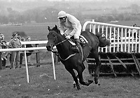 BMW Championship Novice EBF Hurdle at Punchestown Racecourse, 24/04/1990 (Part of the Independent Newspapers Ireland/NLI Collection).