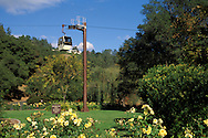 Aerial Tram at Sterling Vineyards, Calistoga, Napa County, California