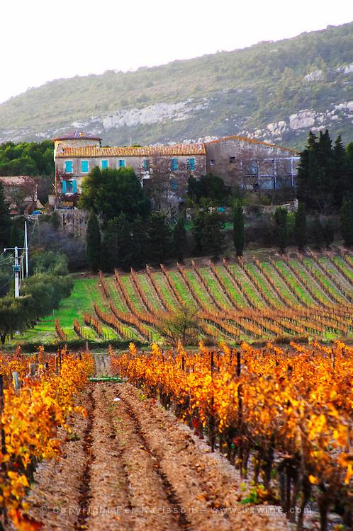 Chateau Pech-Latt. Near Ribaute. Les Corbieres. Languedoc. The villa. The winery building. France. Europe. Vineyard.