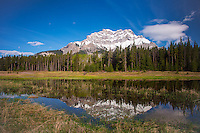 Reflections of Cascade mountain in a pool on the Minnewanka loop in Banff National Park<br /> <br /> ©2014, Sean Phillips<br /> http://www.RiverwoodPhotography.com